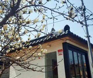 Misori Guesthouse